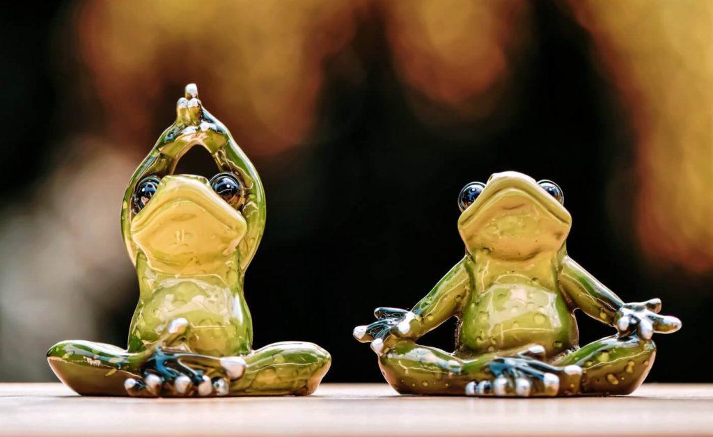 yoga frogs-5088767